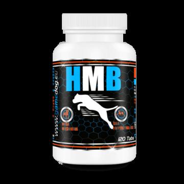 hmb-tabletta-izomepito