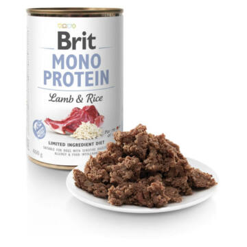 brit_mono_lamb_rice