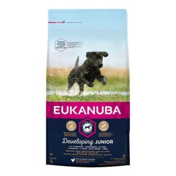 Eukanuba Junior Large 15kg kutyatáp