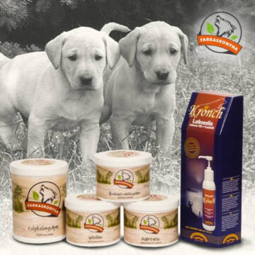 Farkaskonyha Baby-Dog Pro Medium csomag