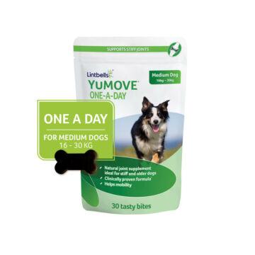 Lintbells YuMOVE One a day falatka közepes testű kutyáknak 16kg - 30kg - 30 db