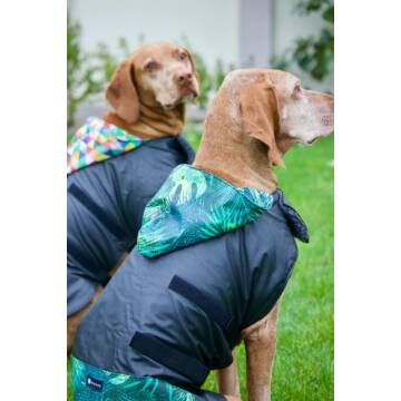 NR Dogs Kutyakabát Fun Jungle XS