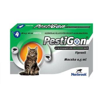 Pestigon cat