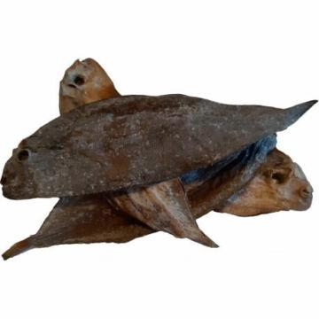 teomann-szaritott-nyelvhal