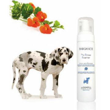 Biogance No Rinse Foamer Dog 200 ml