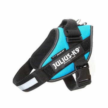 Julius-K9 IDC Powerhám, felirattal, méret 0 Aquamarine