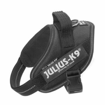 Julius-K9 IDC Powerhám, felirattal, Mini-Mini Fekete