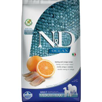 N&D Dog Ocean hering&narancs adult mini 2,5kg