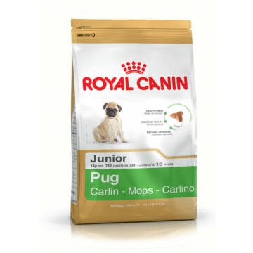 Royal Canin PUG PUPPY 0,5 kg kutyatáp