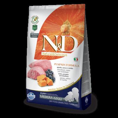 N&D Dog Grain Free bárány&áfonya sütőtökkel puppy medium/maxi 12kg kutyatáp