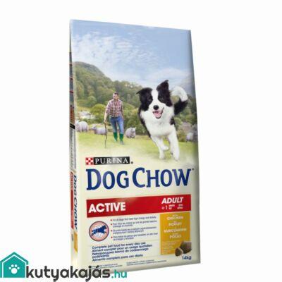 Purina Dog Chow Active Csirke 14kg kutyatáp