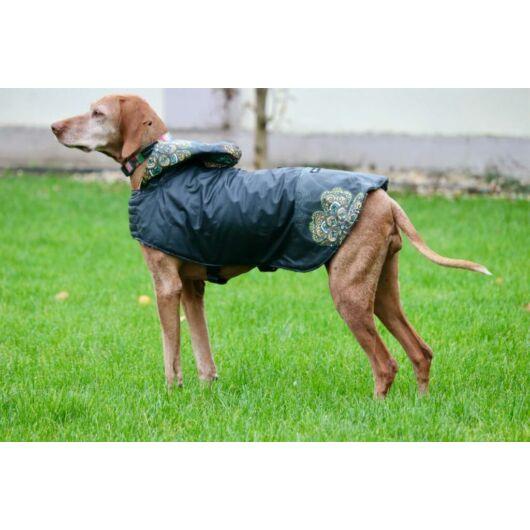 NR Dogs Kutyakabát Fun Mandala L