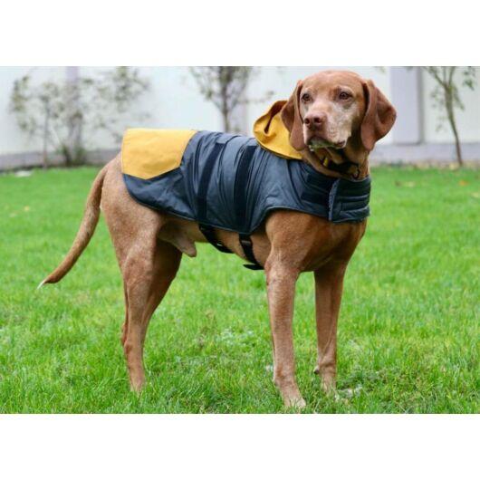 NR Dogs Kutyakabát Okker M