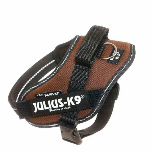 Julius-K9 IDC Powerhám, felirattal, Mini Csoki Barna